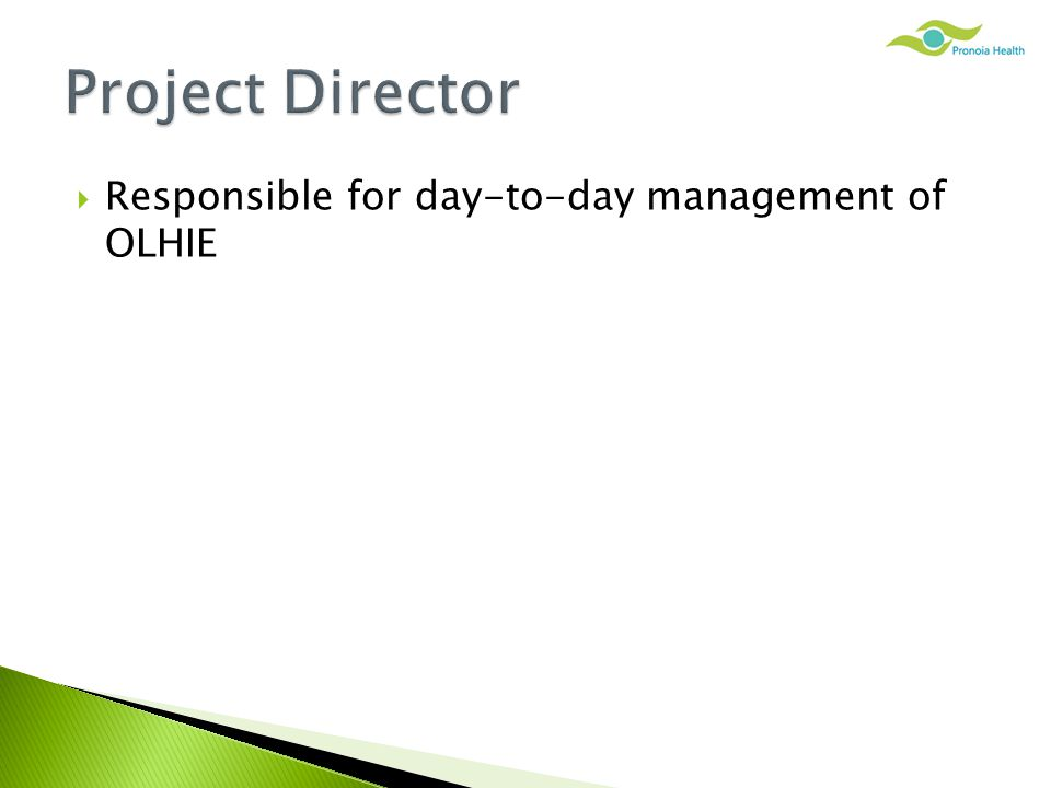  Responsible for day-to-day management of OLHIE