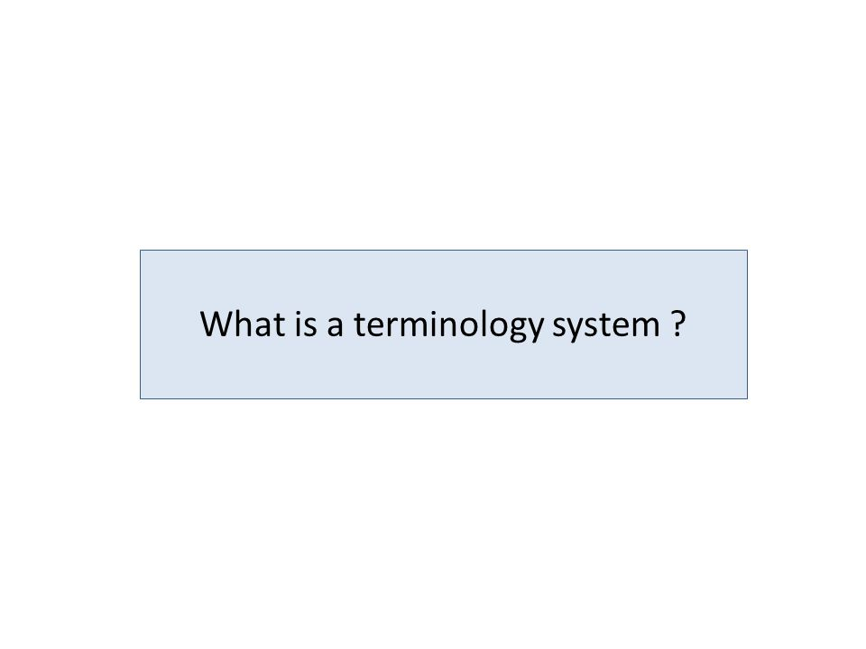 What is a terminology system ?