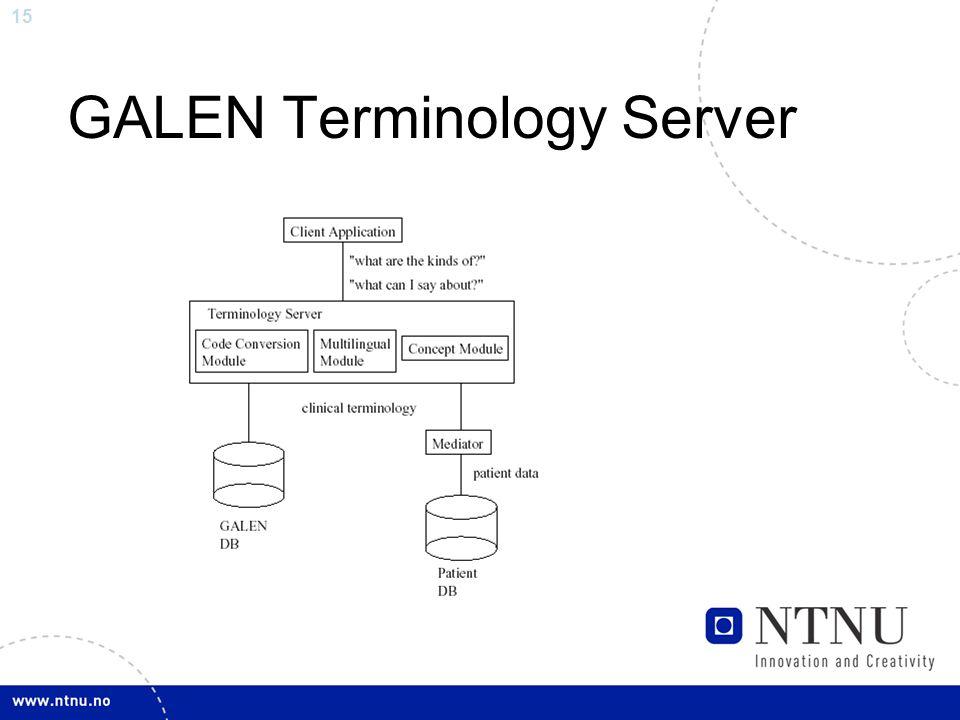 15 GALEN Terminology Server
