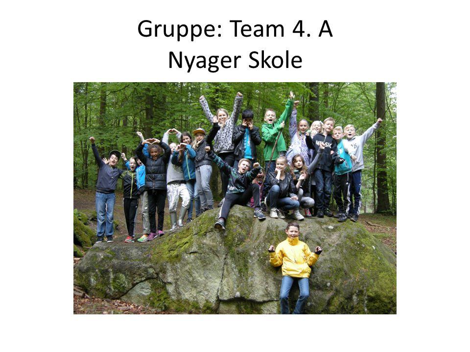 Gruppe: Team 4. A Nyager Skole