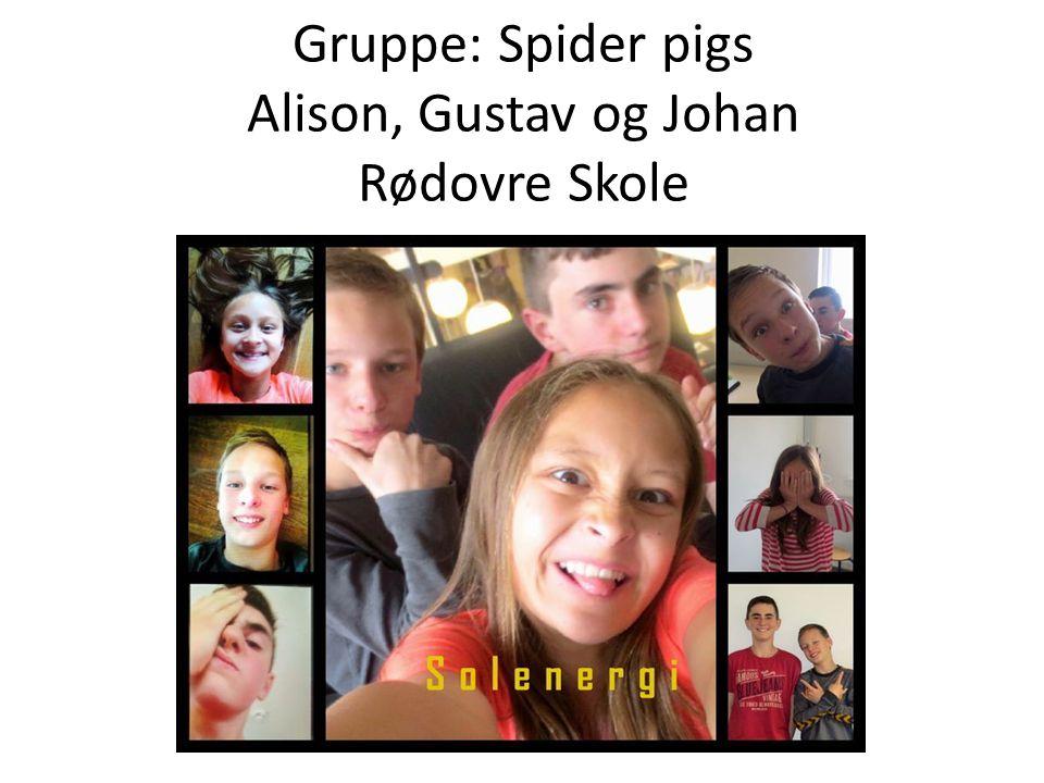 Gruppe: Spider pigs Alison, Gustav og Johan Rødovre Skole
