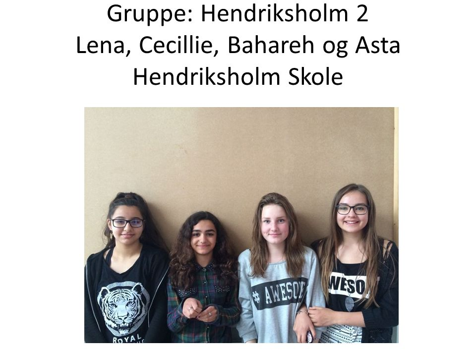 Gruppe: Hendriksholm 2 Lena, Cecillie, Bahareh og Asta Hendriksholm Skole