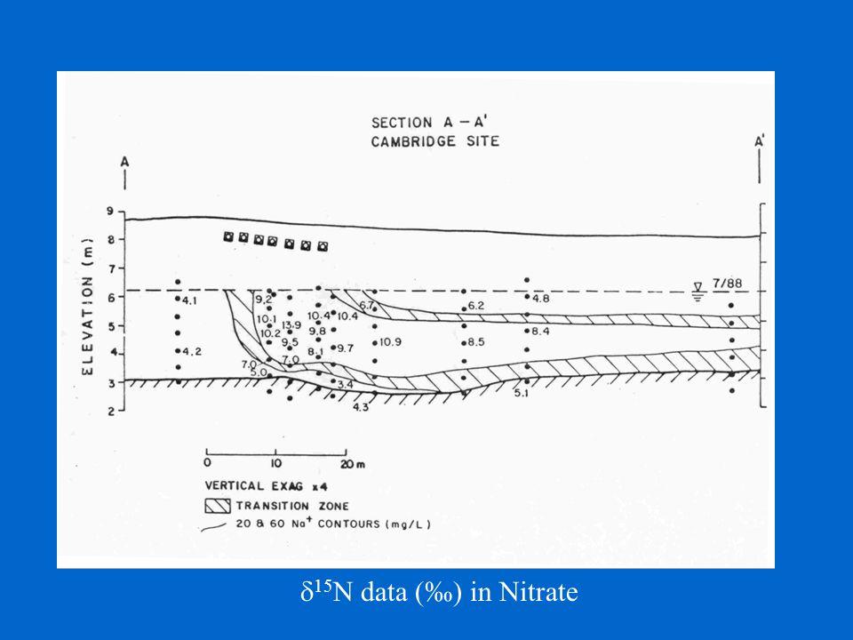  15 N data (‰) in Nitrate