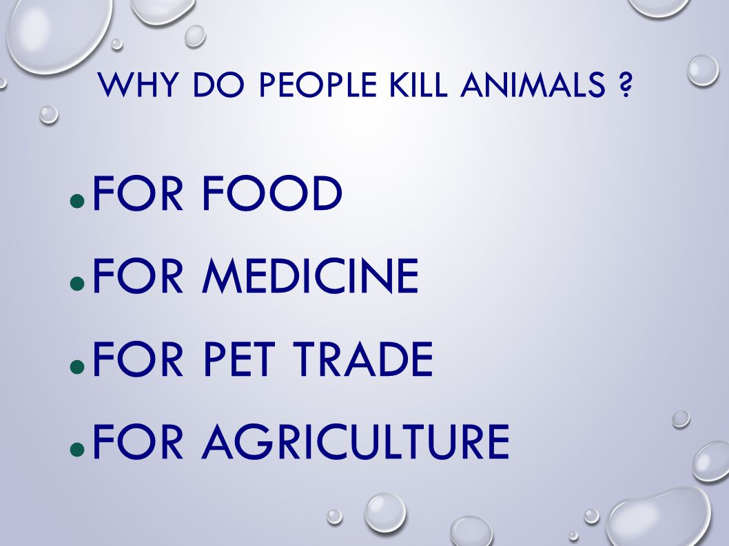 WHY DO PEOPLE KILL ANIMALS ? FOR FOOD FOR MEDICINE FOR PET TRADE FOR AGRICULTURE