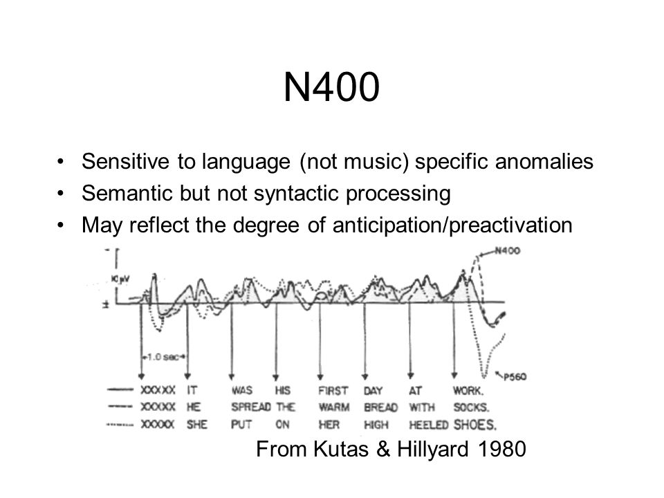 N400 Sensitive to language (not music) specific anomalies Semantic but not syntactic processing May reflect the degree of anticipation/preactivation F