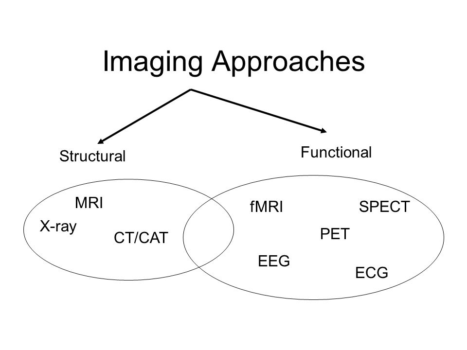 Imaging Approaches Structural Functional X-ray MRI CT/CAT fMRI PET SPECT EEG ECG