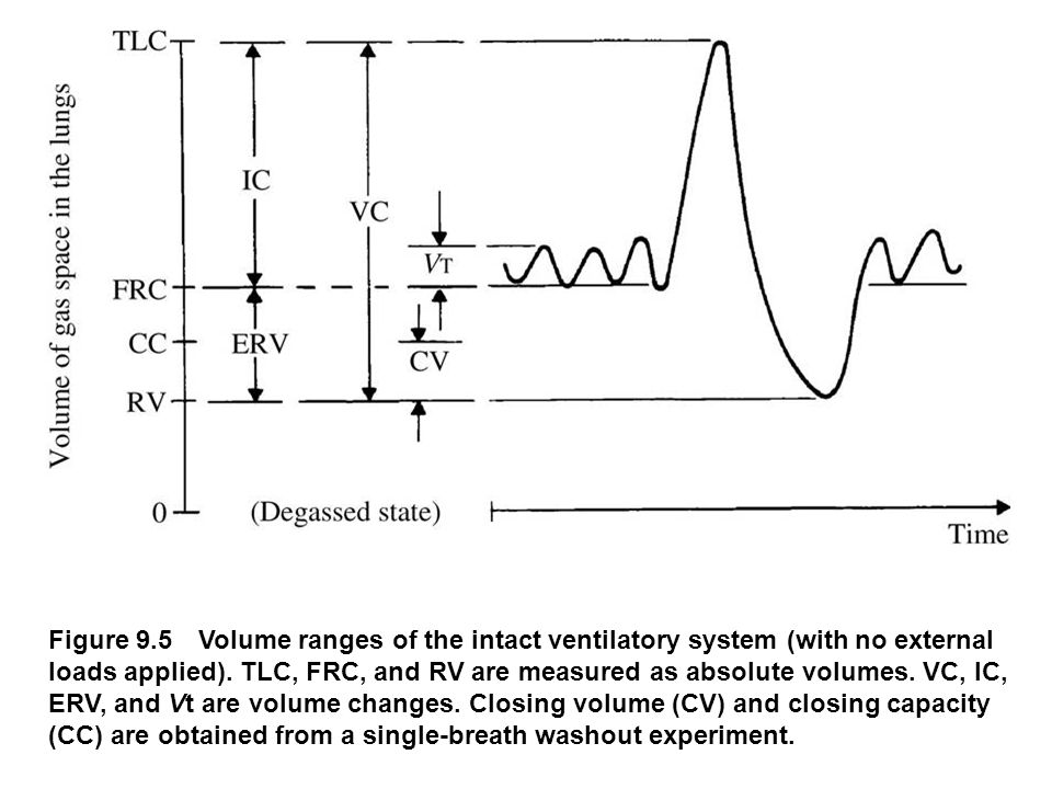 Figure 9.5 Volume ranges of the intact ventilatory system (with no external loads applied). TLC, FRC, and RV are measured as absolute volumes. VC, IC,