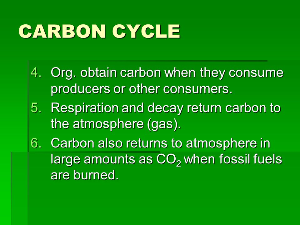 CARBON CYCLE 4.Org. obtain carbon when they consume producers or other consumers. 5.Respiration and decay return carbon to the atmosphere (gas). 6.Car