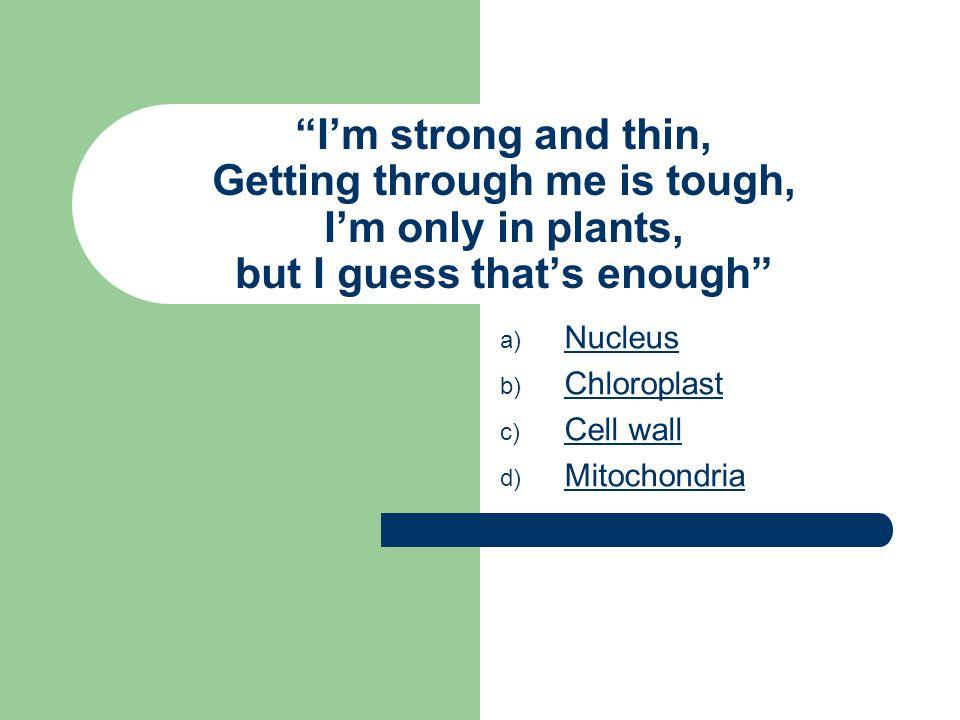 #6 is/are: Golgi bodies Ribosomes E.R. Vacuole