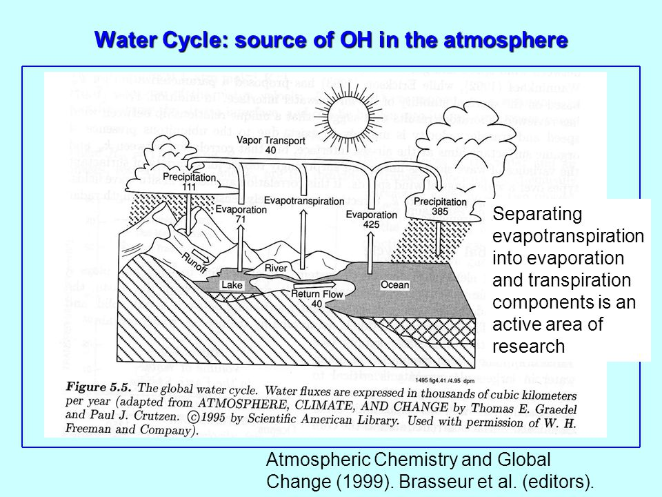 Water Cycle: source of OH in the atmosphere Separating evapotranspiration into evaporation and transpiration components is an active area of research