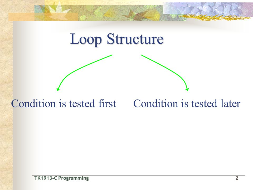 TK1913-C Programming2 TK1913-C Programming 2 Loop Structure Condition is tested firstCondition is tested later