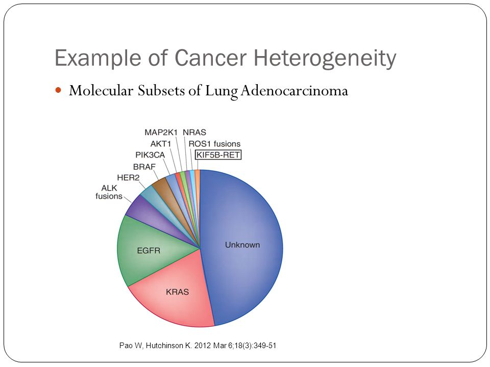 Example of Cancer Heterogeneity Molecular Subsets of Lung Adenocarcinoma Pao W, Hutchinson K.