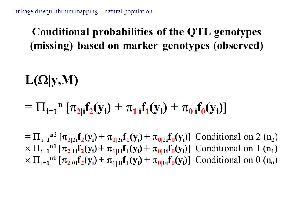 Conditional probabilities of the QTL genotypes (missing) based on marker genotypes (observed) L(  |y,M) =  i=1 n [  2|i f 2 (y i ) +  1|i f 1 (y i ) +  0|i f 0 (y i )] =  i=1 n2 [  2|2i f 2 (y i ) +  1|2i f 1 (y i ) +  0|2i f 0 (y i )] Conditional on 2 (n 2 )   i=1 n1 [  2|1i f 2 (y i ) +  1|1i f 1 (y i ) +  0|1i f 0 (y i )] Conditional on 1 (n 1 )   i=1 n0 [  2|0i f 2 (y i ) +  1|0i f 1 (y i ) +  0|0i f 0 (y i )] Conditional on 0 (n 0 ) Linkage disequilibrium mapping – natural population