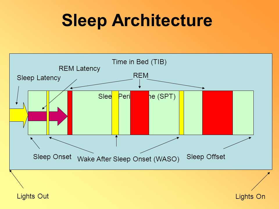 Sleep Architecture Lights Out Lights On Total Recorded Time Time in Bed (TIB) Sleep OnsetSleep Offset Sleep Period Time (SPT) Sleep Latency REM REM La