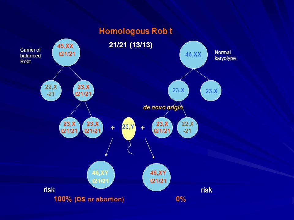 46,XX 22,X -21 23,X t21/21 23,X 45,XX t21/21 23,X t21/21 23,X t21/21 23,Y 23,X t21/21 22,X -21 46,XY t21/21 46,XY t21/21 ++ 100% (DS or abortion) 0% Homologous Rob t 21/21 (13/13) de novo origin risk Carrier of balanced Robt Normal karyotype