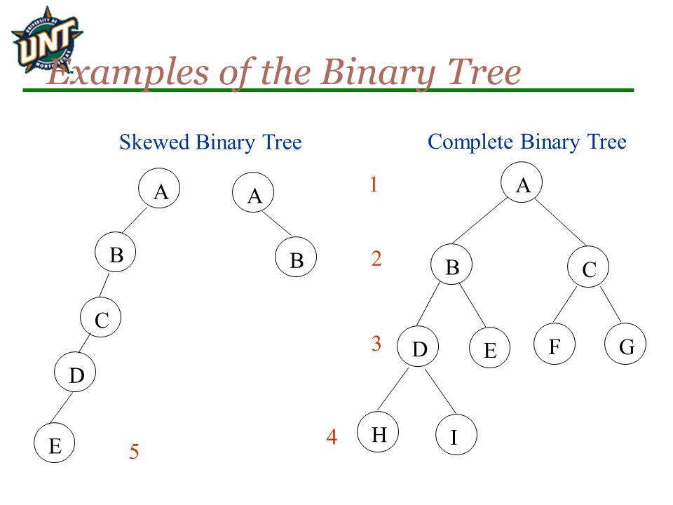 Examples of the Binary Tree A B C G E I D H F Complete Binary Tree 1 2 3 4 A B A B Skewed Binary Tree E C D 5