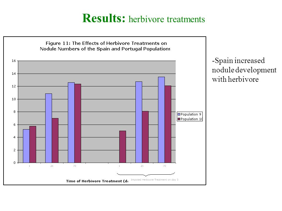 Results: herbivore treatments -Spain increased nodule development with herbivore