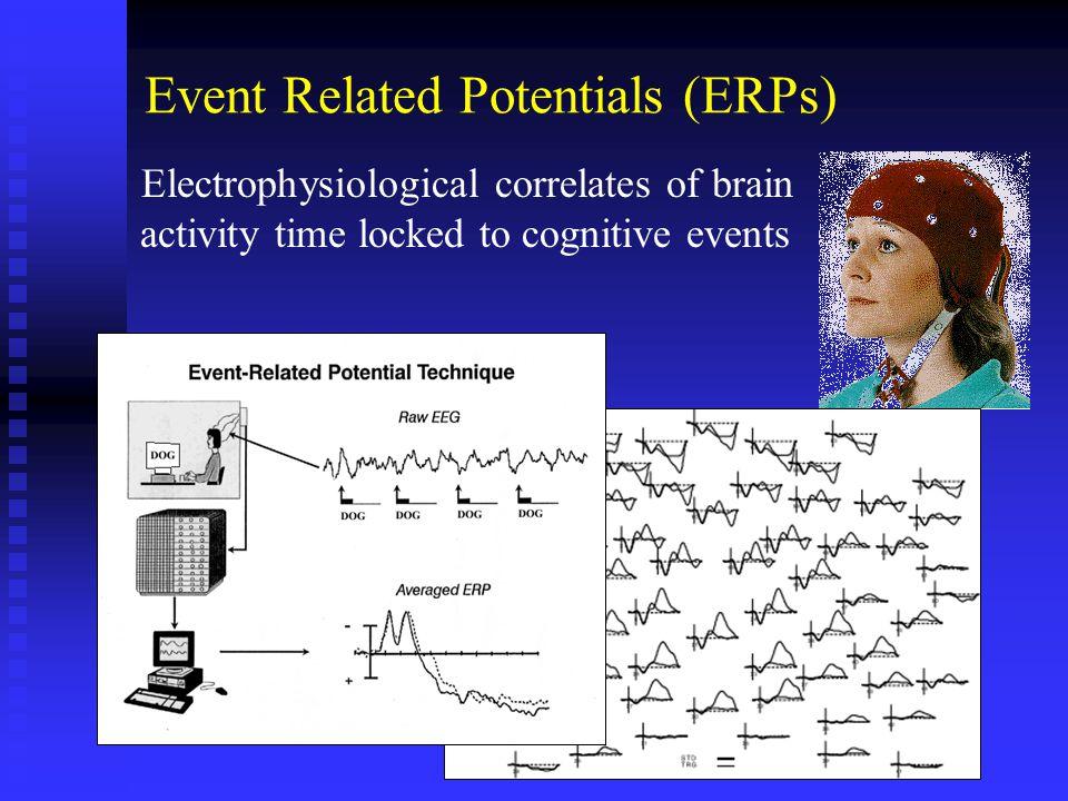 ERP Results Novel Stimuli