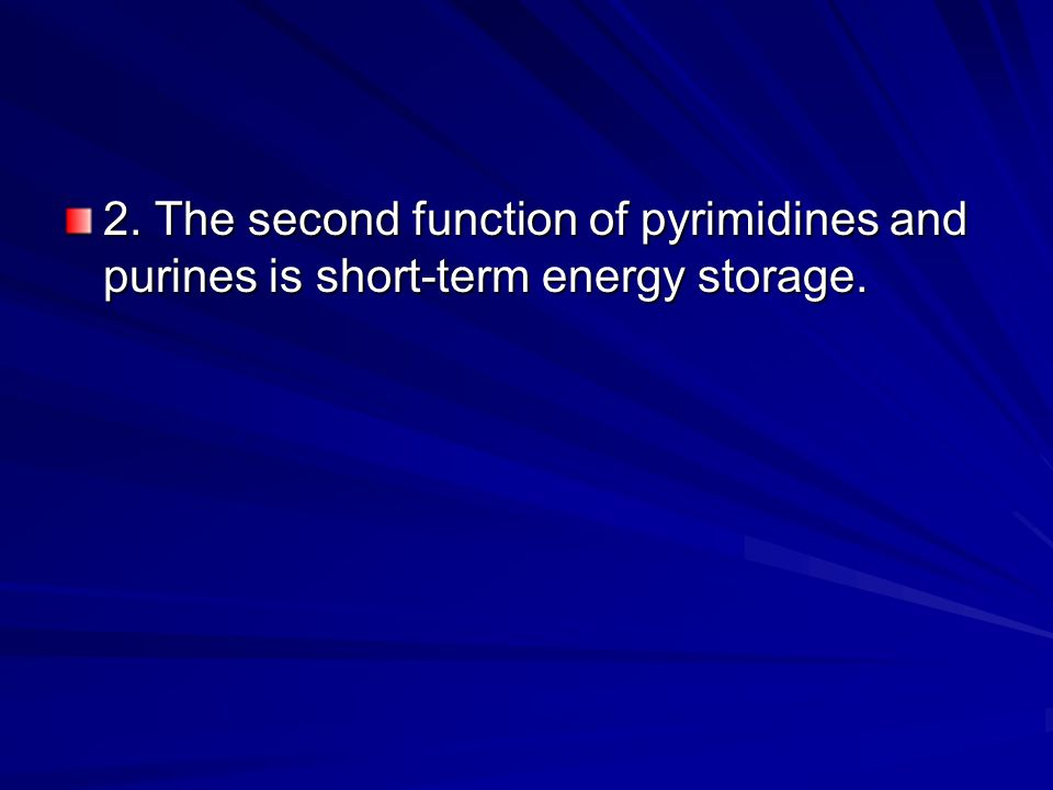 2. The second function of pyrimidines and purines is short-term energy storage.