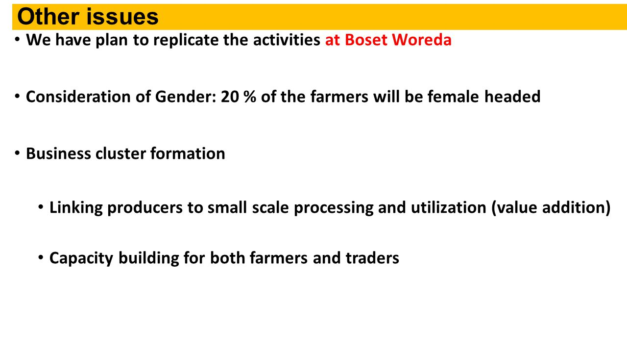 Other issues We have plan to replicate the activities at Boset Woreda Consideration of Gender: 20 % of the farmers will be female headed Business cluster formation Linking producers to small scale processing and utilization (value addition) Capacity building for both farmers and traders