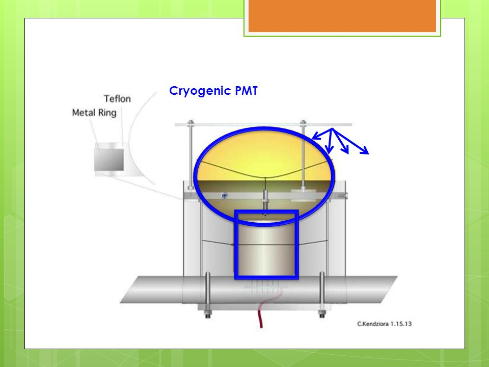 Cryogenic PMT