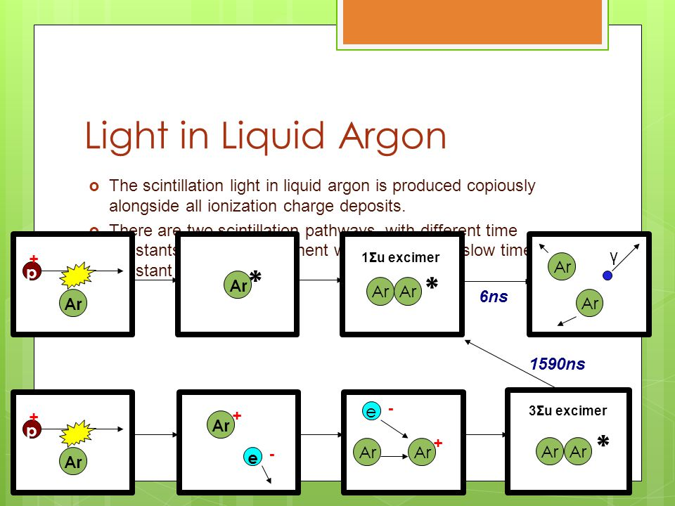 Light in Liquid Argon  The scintillation light in liquid argon is produced copiously alongside all ionization charge deposits.