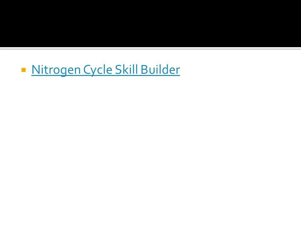  Nitrogen Cycle Skill Builder Nitrogen Cycle Skill Builder