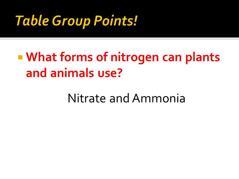  What forms of nitrogen can plants and animals use Nitrate and Ammonia