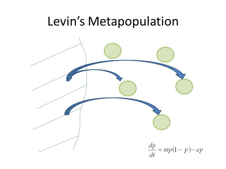 Levin's Metapopulation