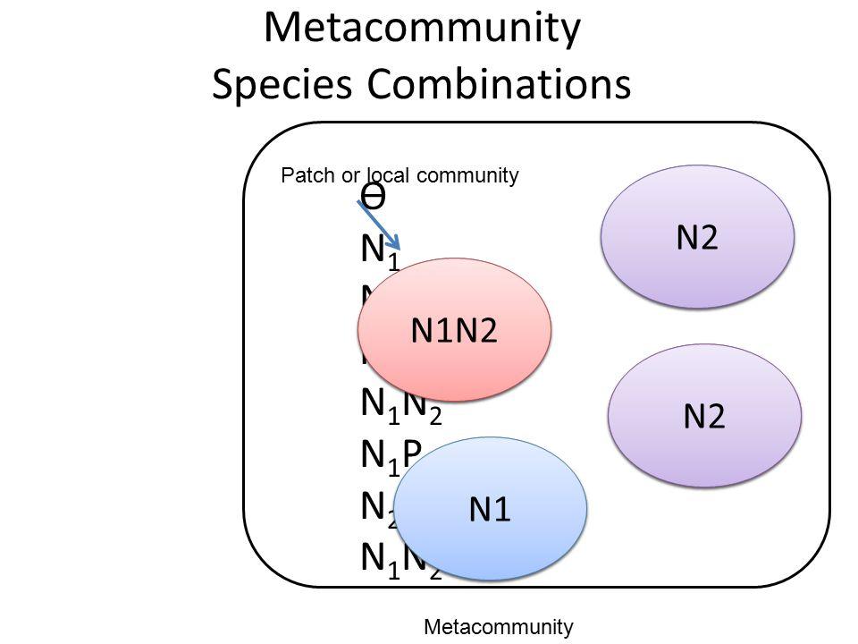 Metacommunity Species Combinations ѲN1N2PN1N2N1PN2PN1N2PѲN1N2PN1N2N1PN2PN1N2P N1 N1N2 N1 N1N2P Patch or local community Metacommunity N1N2 N2 N1