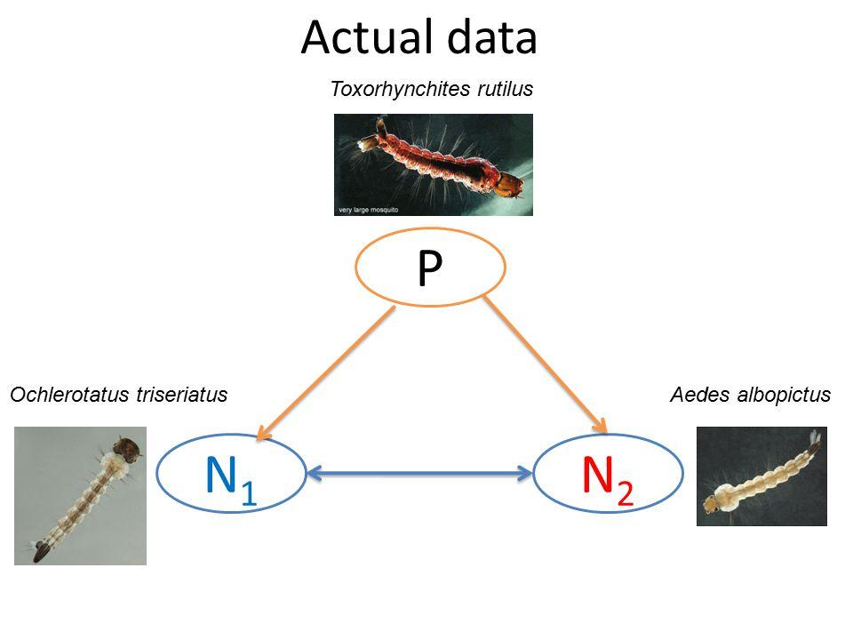 P N2N2 N1N1 Actual data Toxorhynchites rutilus Ochlerotatus triseriatusAedes albopictus