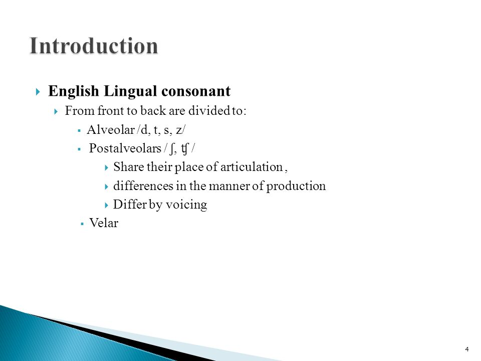  English Lingual consonant  From front to back are divided to:  Alveolar /d, t, s, z/  Postalveolars / ʃ, ʧ /  Share their place of articulation,  differences in the manner of production  Differ by voicing  Velar 4