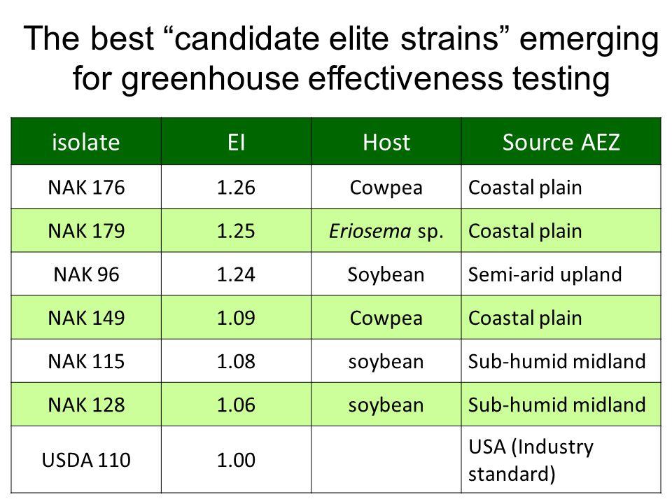 isolateEIHostSource AEZ NAK 1761.26CowpeaCoastal plain NAK 1791.25Eriosema sp.Coastal plain NAK 961.24SoybeanSemi-arid upland NAK 1491.09CowpeaCoastal plain NAK 1151.08soybeanSub-humid midland NAK 1281.06soybeanSub-humid midland USDA 1101.00 USA (Industry standard) The best candidate elite strains emerging for greenhouse effectiveness testing