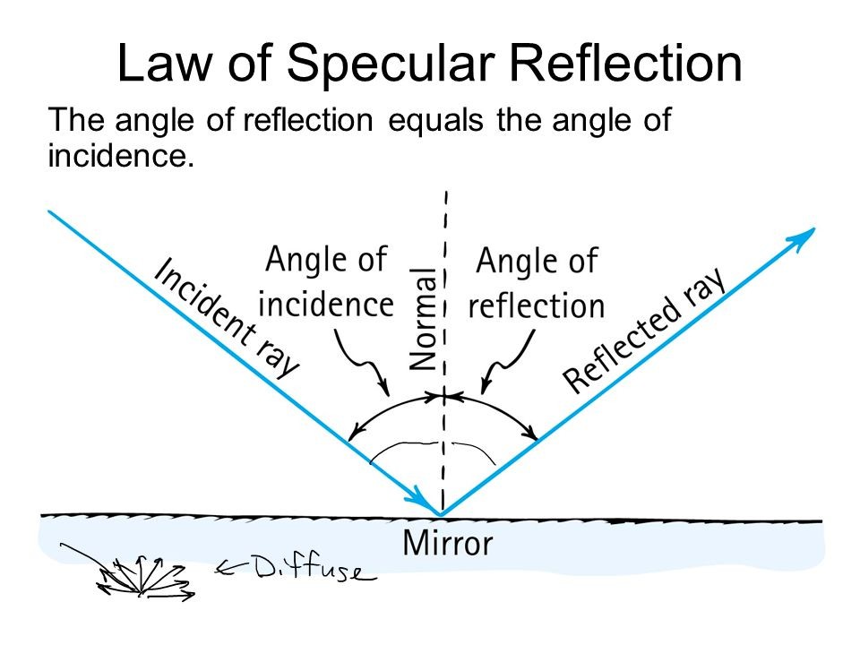 Law of Specular Reflection The angle of reflection equals the angle of incidence.