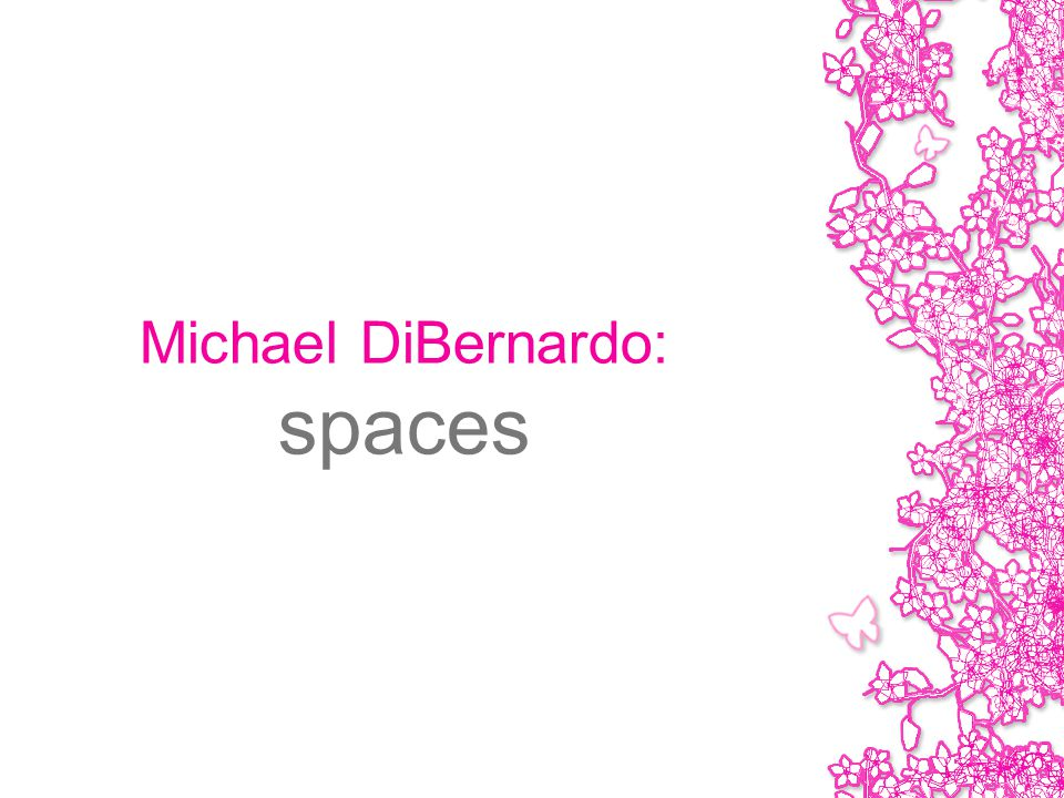 Michael DiBernardo: spaces