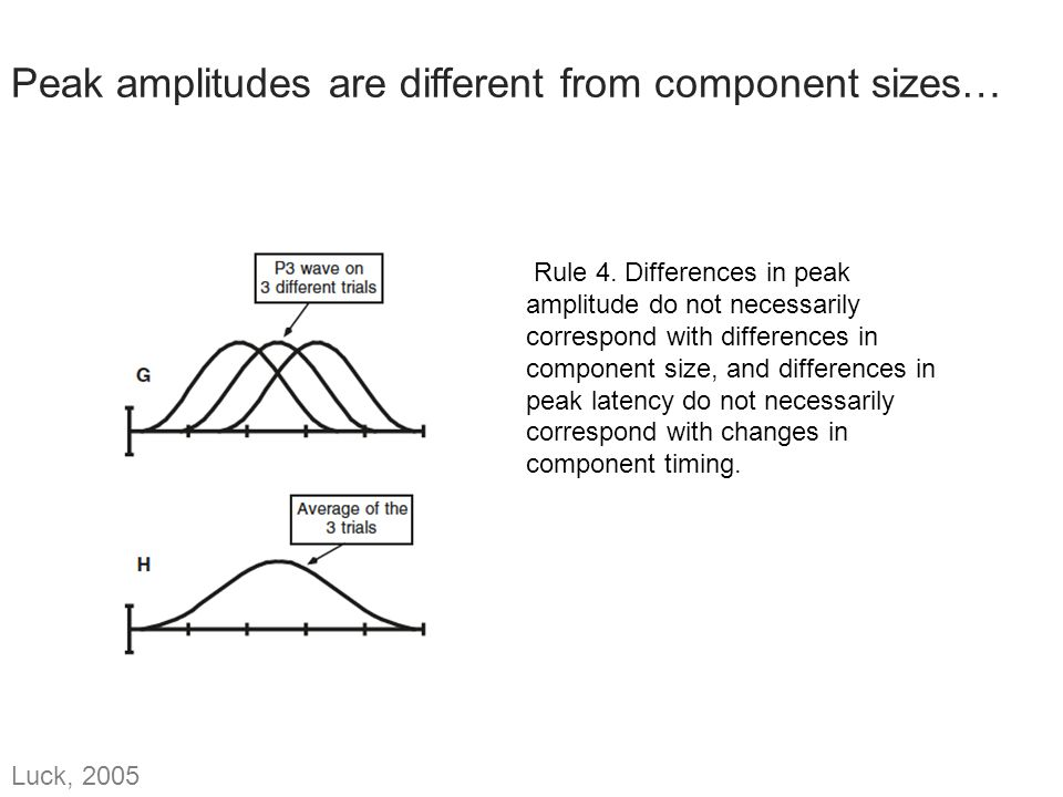 Peak amplitudes are different from component sizes… Rule 4. Differences in peak amplitude do not necessarily correspond with differences in component