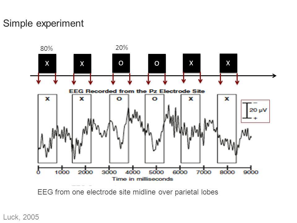 Simple experiment ERP Components: P = Positive N = Negative P1 = P100 P2 = P200 P3 = P300 etc.
