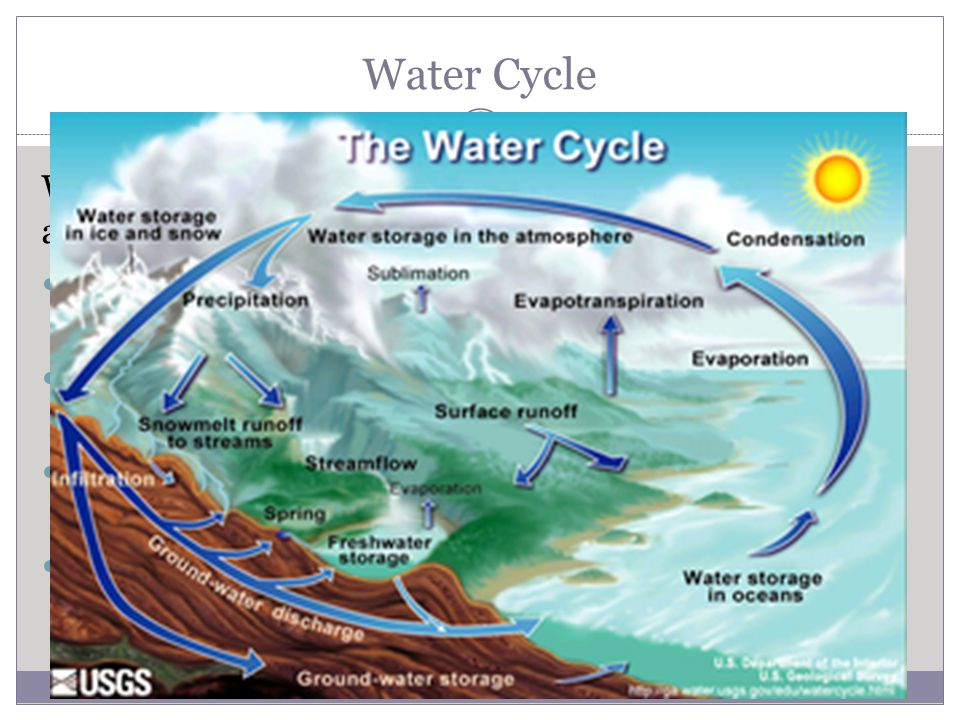 Water Cycle Water moves continuously between, oceans, the atmosphere, land and the organisms in them.