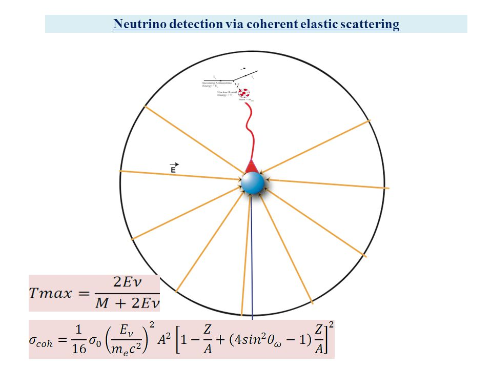 Neutrino detection via coherent elastic scattering