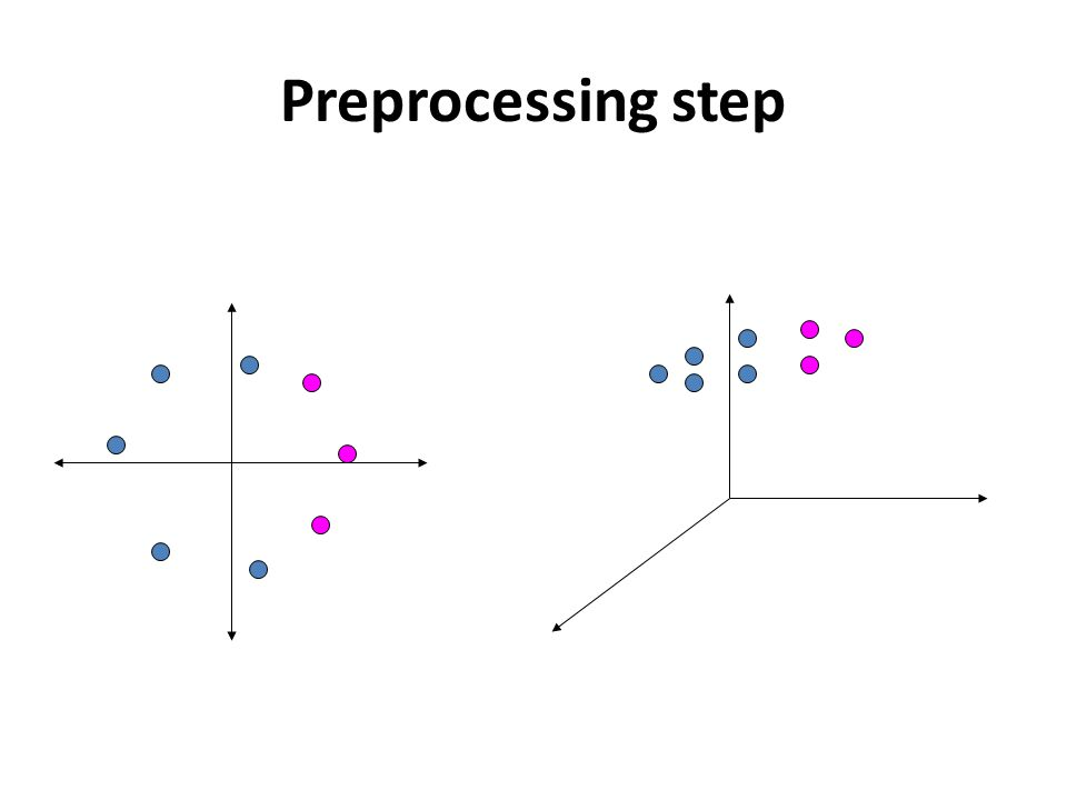 Preprocessing step