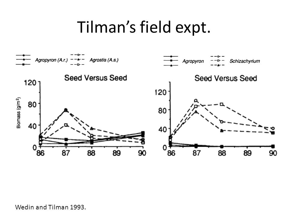Tilman's field expt. Wedin and Tilman 1993.
