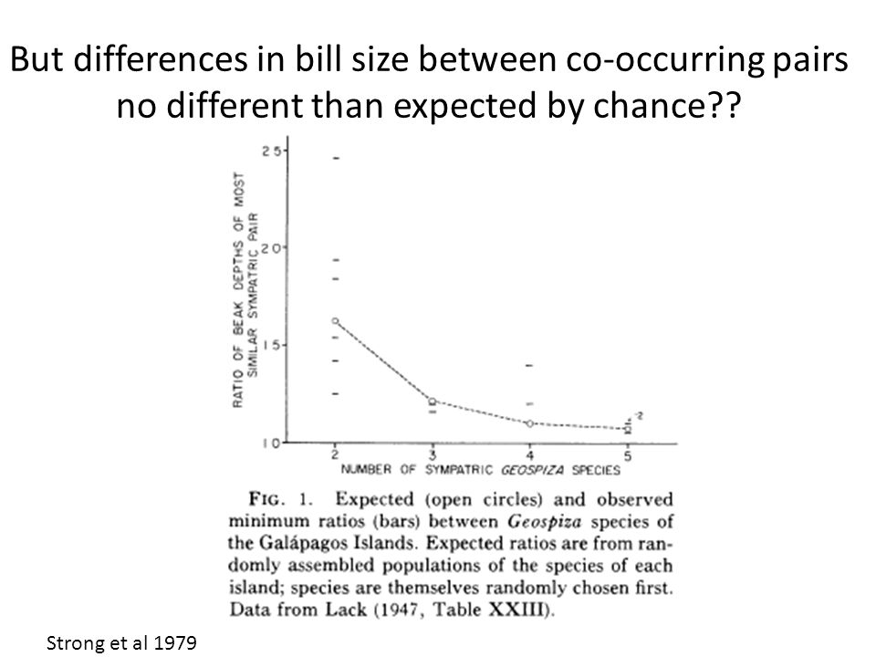 Strong et al 1979 But differences in bill size between co-occurring pairs no different than expected by chance??