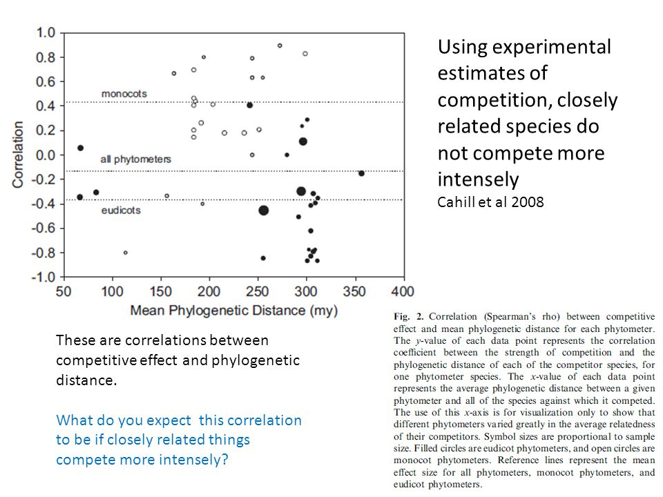 Using experimental estimates of competition, closely related species do not compete more intensely Cahill et al 2008 These are correlations between co