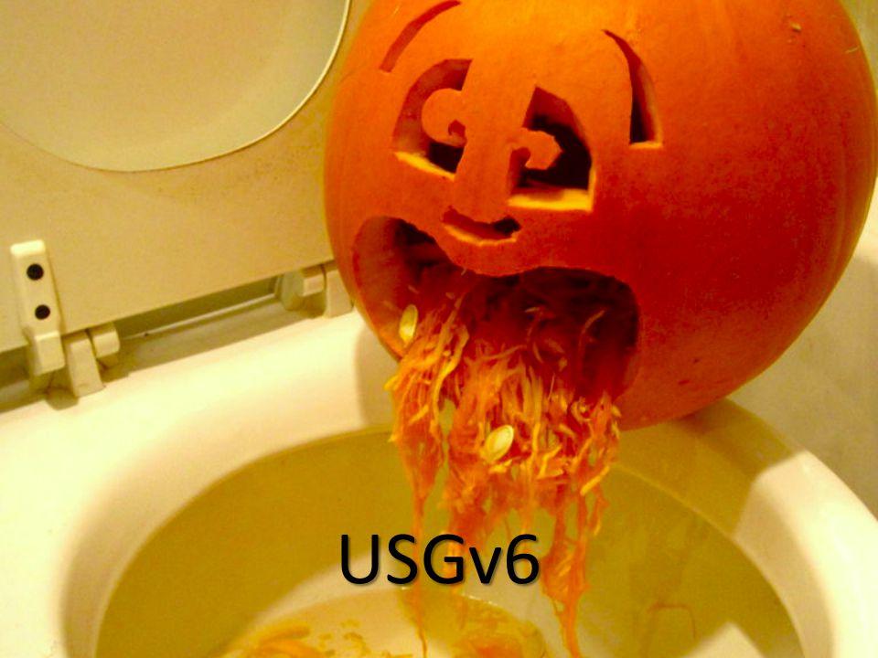 USGv6