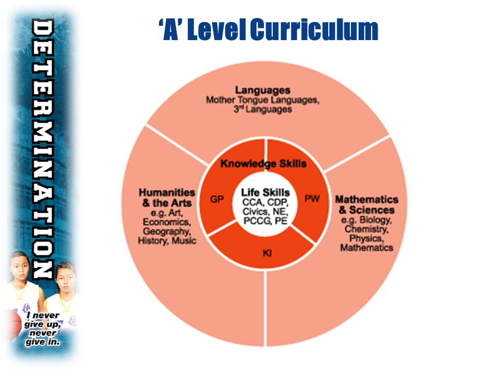 'A' Level Curriculum