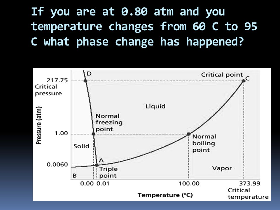 If you are at 0.80 atm and you temperature changes from 60 C to 95 C what phase change has happened?