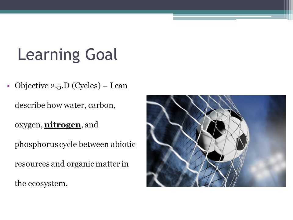 Learning Goal Objective 2.5.D (Cycles) – I can describe how water, carbon, oxygen, nitrogen, and phosphorus cycle between abiotic resources and organic matter in the ecosystem.