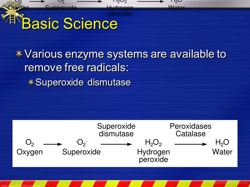 Basic Science Various enzyme systems are available to remove free radicals: Superoxide dismutase Various enzyme systems are available to remove free radicals: Superoxide dismutase