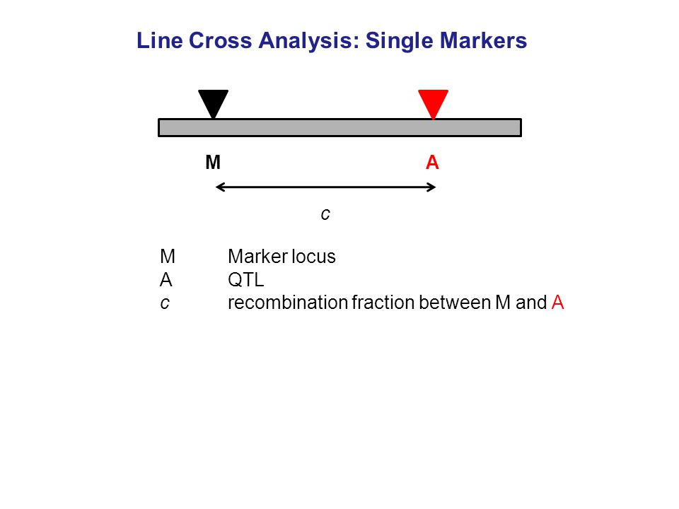 MMarker locus AQTL c recombination fraction between M and A Line Cross Analysis: Single Markers MA c