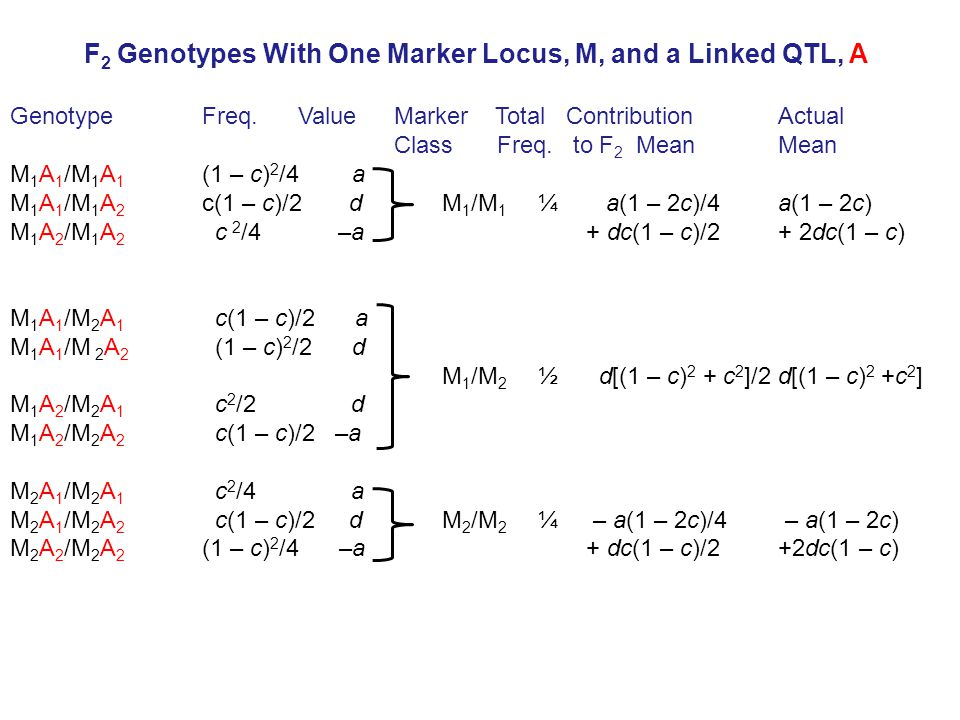 GenotypeFreq. Value Marker Total ContributionActual Class Freq.